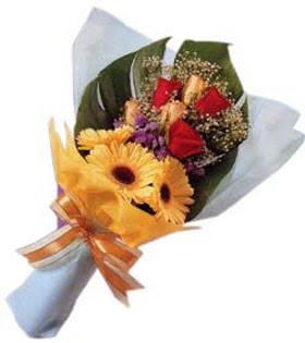güller ve gerbera çiçekleri   Samsun online çiçek gönderme sipariş