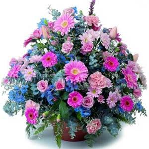 karisik mevsim kir çiçekleri  Samsun online çiçek gönderme sipariş