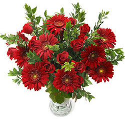 5 adet kirmizi gül 5 adet gerbera aranjmani  Samsun çiçek online çiçek siparişi