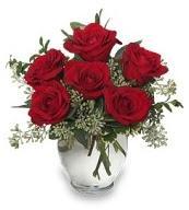 Vazo içerisinde 5 adet kırmızı gül  Samsun çiçek servisi , çiçekçi adresleri