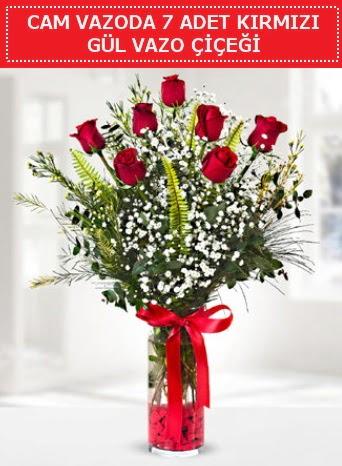 Cam vazoda 7 adet kırmızı gül çiçeği  Samsun online çiçek gönderme sipariş
