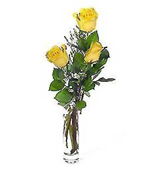 Samsun yurtiçi ve yurtdışı çiçek siparişi  3 adet kalite cam yada mika vazo gül