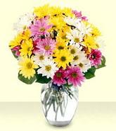 Samsun yurtiçi ve yurtdışı çiçek siparişi  mevsim çiçekleri mika yada cam vazo