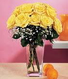 Samsun kaliteli taze ve ucuz çiçekler  9 adet sari güllerden cam yada mika vazo