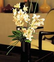 Samsun güvenli kaliteli hızlı çiçek  cam yada mika vazo içerisinde dal orkide