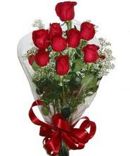 9 adet kaliteli kirmizi gül   Samsun çiçekçiler