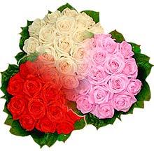 3 renkte gül seven sever   Samsun anneler günü çiçek yolla