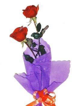 2  adet kirmizi gül buketi   Samsun anneler günü çiçek yolla