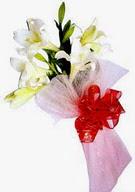 Samsun anneler günü çiçek yolla  ince vazoda gerbera ve ayi