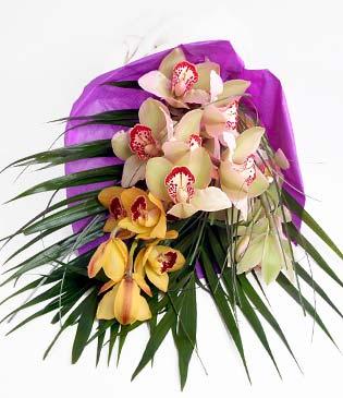 Samsun çiçek gönderme sitemiz güvenlidir  1 adet dal orkide buket halinde sunulmakta