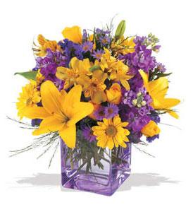 Samsun hediye çiçek yolla  cam içerisinde kir çiçekleri demeti