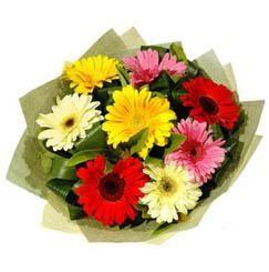 9 adet karisik gerbera demeti  Samsun hediye çiçek yolla