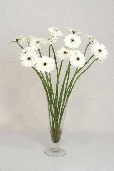 Samsun hediye çiçek yolla  cam vazo içerisinde 17 adet sade gerbera