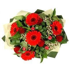 Samsun hediye sevgilime hediye çiçek   5 adet kirmizi gül 5 adet gerbera demeti