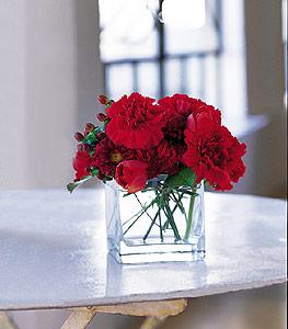 Samsun hediye sevgilime hediye çiçek  kirmizinin sihri cam içinde görsel sade çiçekler