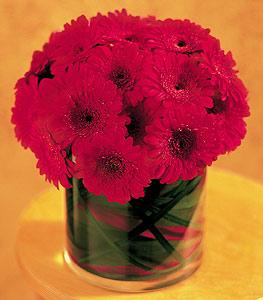 Samsun hediye sevgilime hediye çiçek  23 adet gerbera çiçegi sade ve sik cam içerisinde