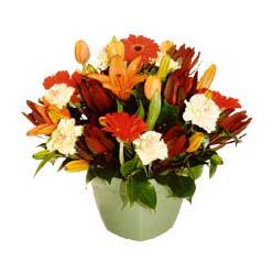 mevsim çiçeklerinden karma aranjman  Samsun internetten çiçek siparişi