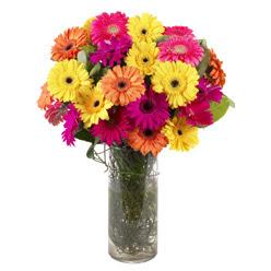 KARISIK GERBERALARDAN CAM VAZO TANZIMI  Samsun çiçek siparişi sitesi