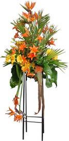 Samsun çiçek mağazası , çiçekçi adresleri  perförje tanzimi dügün nikah ve açilislara