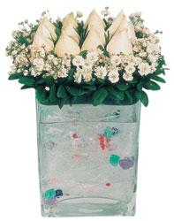Samsun çiçek servisi , çiçekçi adresleri  7 adet beyaz gül cam yada mika vazo tanzim