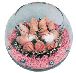 Samsun kaliteli taze ve ucuz çiçekler  cam fanus içerisinde 10 adet gül