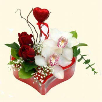 Samsun çiçek satışı  1 kandil orkide 5 adet kirmizi gül mika kalp