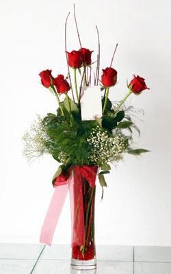 Samsun çiçek gönderme sitemiz güvenlidir  6 adet kirmizi gül ve cam yada mika vazo