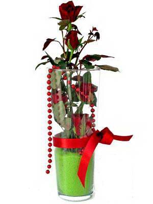 Samsun çiçek yolla , çiçek gönder , çiçekçi   Cam yada mika içerisinde 9 adet kirmizi gül - sevdiklerinize özel