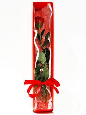 Samsun internetten çiçek satışı  1 adet kutuda gül