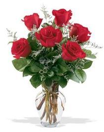 Samsun online çiçek gönderme sipariş  7 adet kirmizi gül cam yada mika vazoda sevenlere