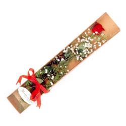 Samsun anneler günü çiçek yolla  Kutuda tek 1 adet kirmizi gül çiçegi