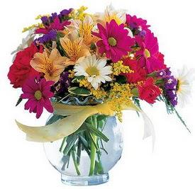 Samsun kaliteli taze ve ucuz çiçekler  cam yada mika içerisinde karisik mevsim çiçekleri