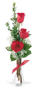 Samsun çiçek gönderme sitemiz güvenlidir  mika yada cam vazoda 3 adet kirmizi gül
