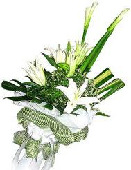 Samsun çiçek siparişi sitesi  3 dal kazablanka çiçegi ve yesillikler