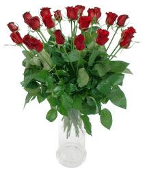 Samsun uluslararası çiçek gönderme  11 adet kimizi gülün ihtisami cam yada mika vazo modeli