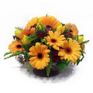 gerbera ve kir çiçek masa aranjmani  Samsun online çiçekçi , çiçek siparişi