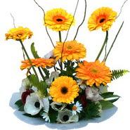 camda gerbera ve mis kokulu kir çiçekleri  Samsun uluslararası çiçek gönderme