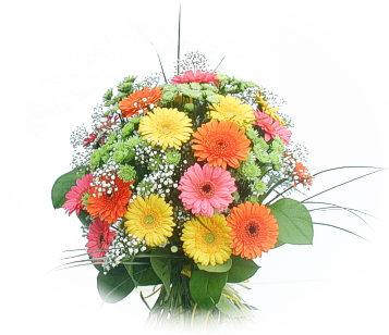 13 adet gerbera çiçegi buketi  Samsun çiçek yolla , çiçek gönder , çiçekçi