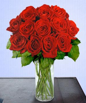 Anneme 12 adet cam içerisinde kirmizi gül  Samsun çiçek mağazası , çiçekçi adresleri