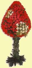 Samsun cicekciler , cicek siparisi  dügün açilis çiçekleri  Samsun çiçek , çiçekçi , çiçekçilik