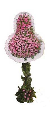 Samsun hediye sevgilime hediye çiçek  dügün açilis çiçekleri  Samsun yurtiçi ve yurtdışı çiçek siparişi