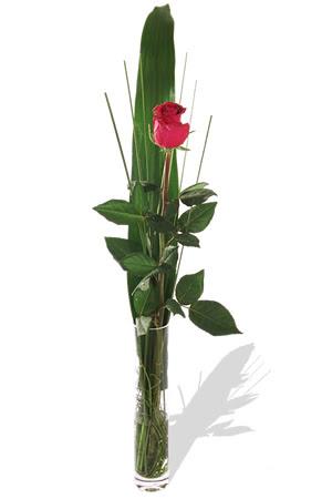 1 adet cam vazo içerisinde kirmizi gül  Samsun anneler günü çiçek yolla