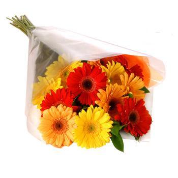 Karisik renklerde gerbera buketi  Samsun çiçek gönderme sitemiz güvenlidir
