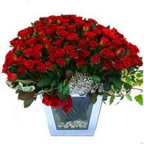 Samsun güvenli kaliteli hızlı çiçek   101 adet kirmizi gül aranjmani