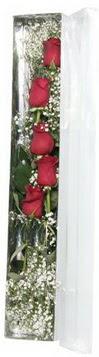 Samsun çiçek mağazası , çiçekçi adresleri   5 adet gülden kutu güller