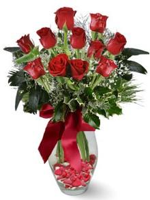 9 adet gül  Samsun kaliteli taze ve ucuz çiçekler  kirmizi gül