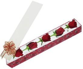 Samsun kaliteli taze ve ucuz çiçekler  kutu içerisinde 5 adet kirmizi gül