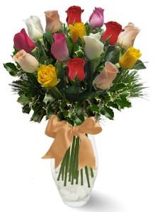 15 adet vazoda renkli gül  Samsun kaliteli taze ve ucuz çiçekler