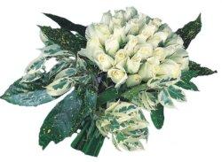 Samsun yurtiçi ve yurtdışı çiçek siparişi  9 Beyaz gül Özel kisiler için