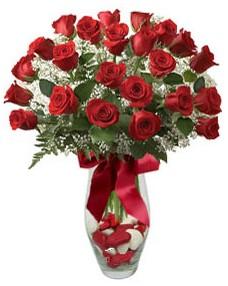 17 adet essiz kalitede kirmizi gül  Samsun hediye çiçek yolla